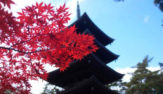 福泉寺の紅葉情報2019。五重の塔と紅葉のコントラストが美しい!見頃、混雑情報も。