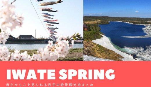 【岩手の春2020】春だからこそ見られる絶景観光地まとめ