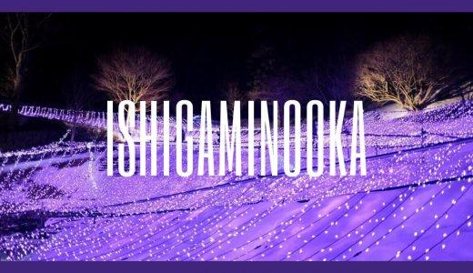 【いわてまちイルミネーション2019~冬の花畑~】石神の丘美術館の光のラベンダーが美しい!