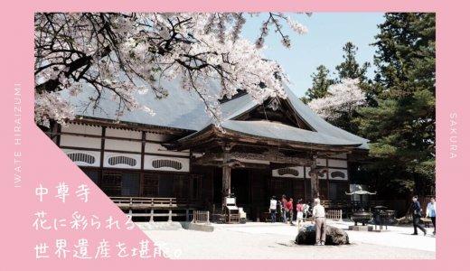 中尊寺の桜・お花見情報2019。花に彩られる世界遺産を堪能
