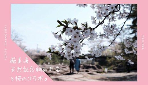 厳美渓の桜情報2019。天然記念物の奇岩と桜が美しいお花見スポット