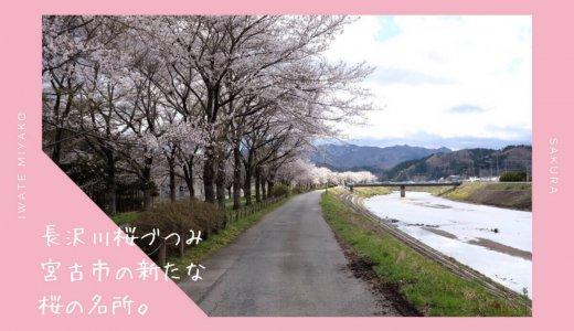 長沢川桜づつみのお花見情報2019。宮古市の新しい桜の名所