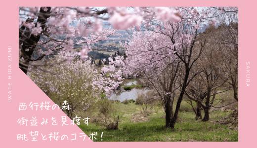 西行桜の森の桜・お花見情報2020。街並みを見渡す眺望と桜|平泉町