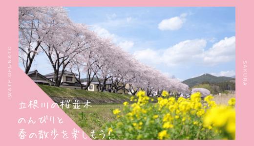 立根川の桜並木・お花見情報2020。ソメイヨシノが美しい散歩道|大船渡市