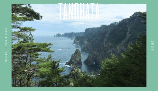 北山崎|高さ200mの断崖絶壁!三陸海岸の名スポットを探索!